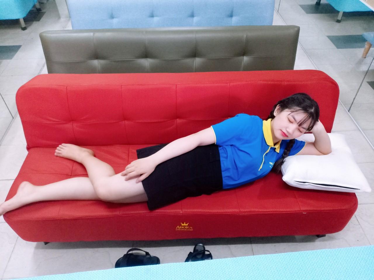 Sofa Giường giá rẻ chỉ 2300k - 1